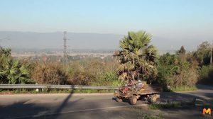 เกษตรเมืองพะเยาใช้วิธีไถกลบตอซัง ลดการเผาและสร้างหมอกควัน