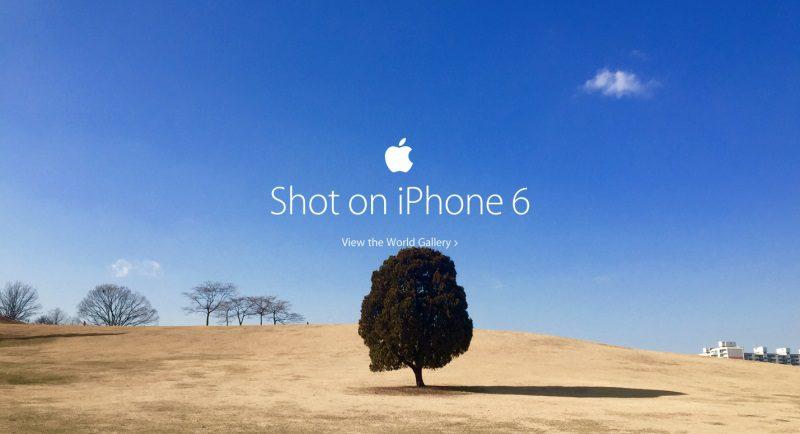 Apple-World-Gallery-800x434
