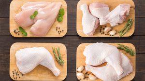 เคล็ดลับ การชำแหละไก่ หากรู้ขั้นตอนก็ง่ายนิดเดียว