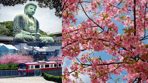 มารู้จักกับสถานที่ท่องเที่ยวต่างๆ ในคาบสมุทรมิอุระ เที่ยวญี่ปุ่น