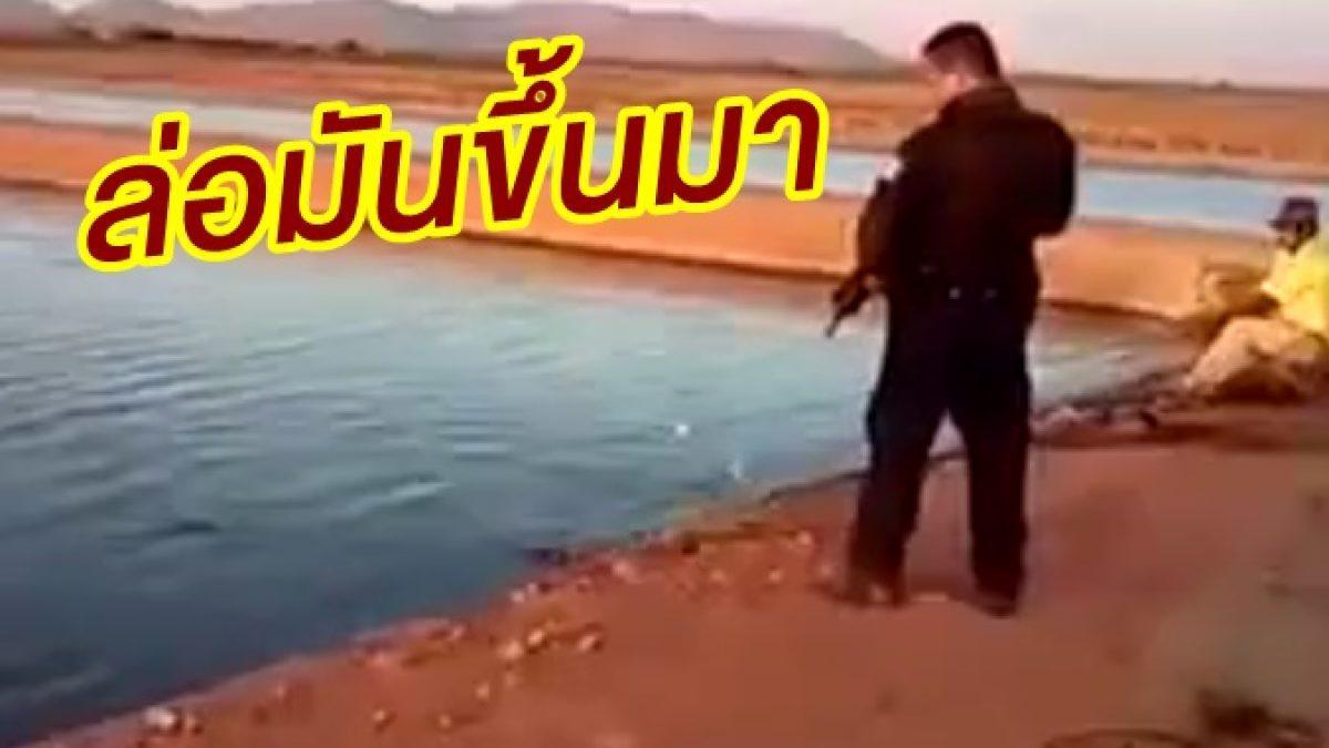จังหวะรอเชือด! วินาทีตำรวจเม็กซิโกวิสามัญโคตรไอ้เคี่ยม