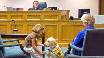 ฮีโร่สุนัขหูหนวก อยู่เป็นกำลังใจให้เด็กระหว่างขึ้นศาล จนชนะคดีความ