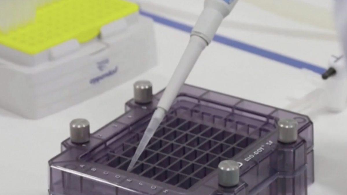 ไฟเซอร์-ไบโอเอ็นเทคเริ่มทดลองวัคซีนโควิด-19 ในคน