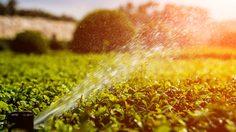 บำบัดน้ำเสียในบ้าน วิธีหมุนเวียนใช้งานน้ำอย่างคุ้มค่า