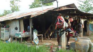 วอนช่วยหนุ่มสุรินทร์ตาบอดทั้ง 2 ข้าง อาศัยอยู่ในบ้านสังกะสีผุพัง