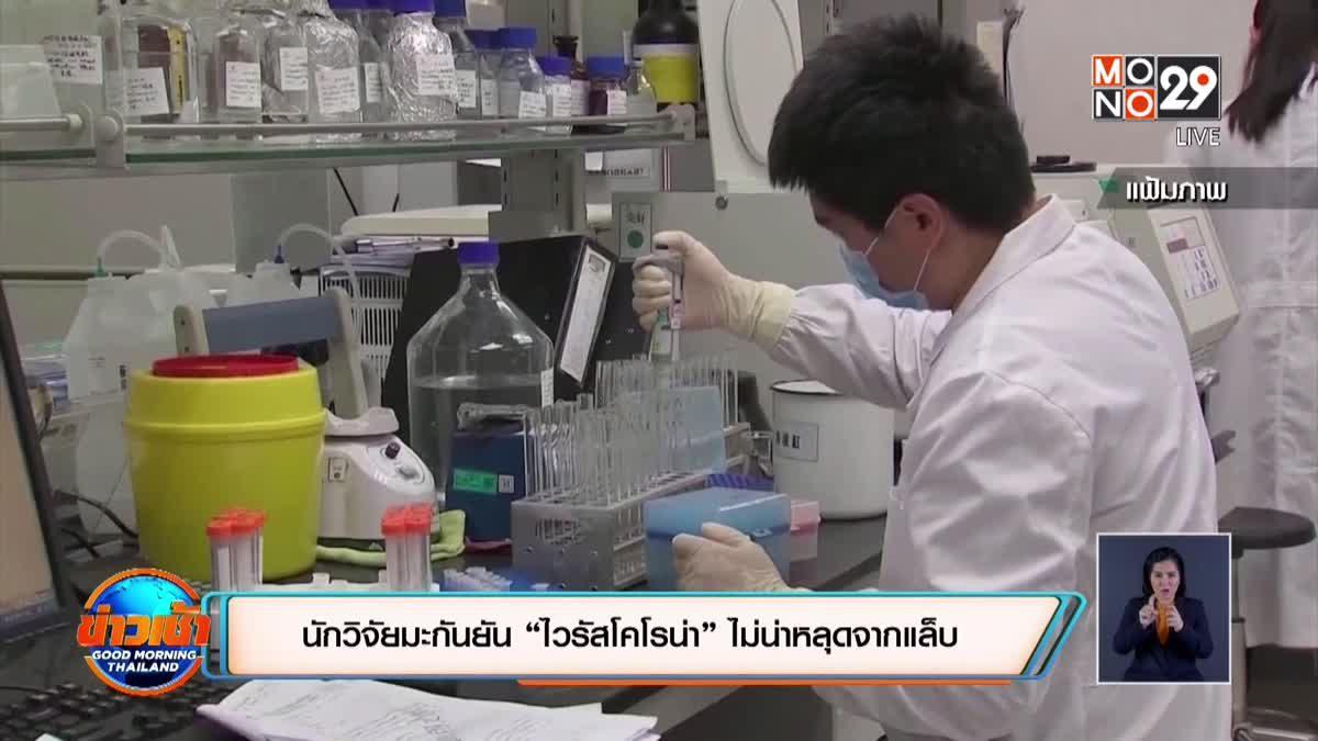 """นักวิจัยมะกันยัน """"ไวรัสโคโรน่า"""" ไม่หลุดจากแล็บ"""