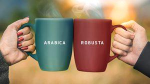 กาแฟอาราบิก้าVSกาแฟโรบัสต้า ถ้าสองสายพันธุ์นี้มารวมตัวกันจะเป็นอย่างไร ?