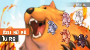 เรื่อง หมี หมี ใน RO