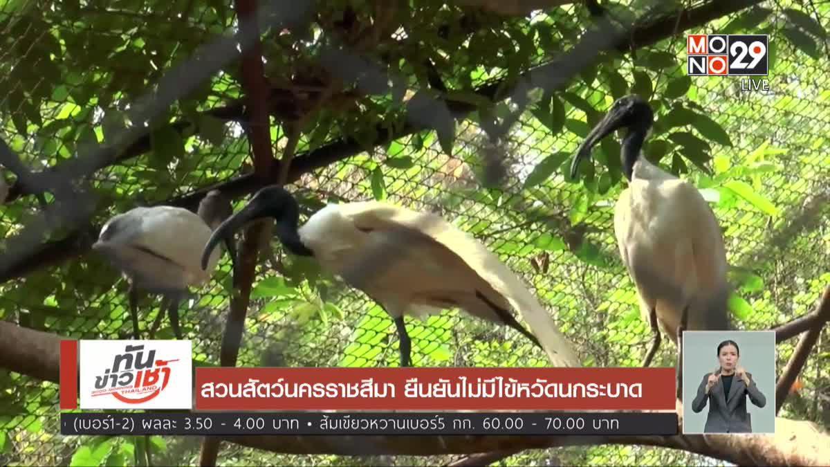 สวนสัตว์นครราชสีมา ยืนยันไม่มีไข้หวัดนกระบาด