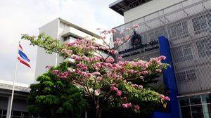 สถาบันเทคโนโลยีไทย-ญี่ปุ่น เปิดรับสมัครพร้อมกันทั้ง Portfolio และรอบสอบตรง