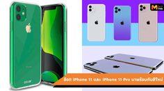 ลือ!!! iPhone 11 อาจจะมาพร้อมกับสีเขียวและสีรุ้งใหม่ เหมือนสี Aura Glow
