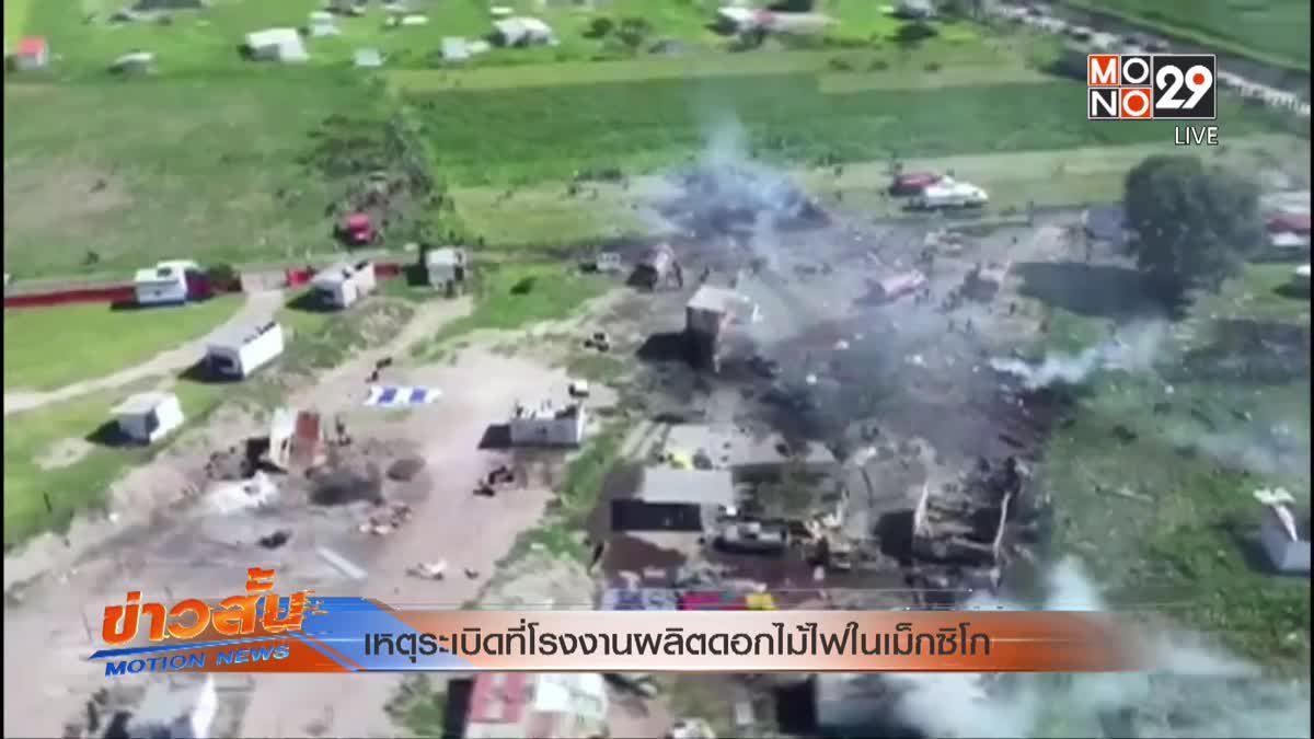 เหตุระเบิดที่โรงงานผลิตดอกไม้ไฟในเม็กซิโก