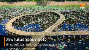 สะพานไม้รักร้อยดวงใจ ที่เที่ยวใหม่โคราช กลางทุ่งดอกบัวสีชมพู