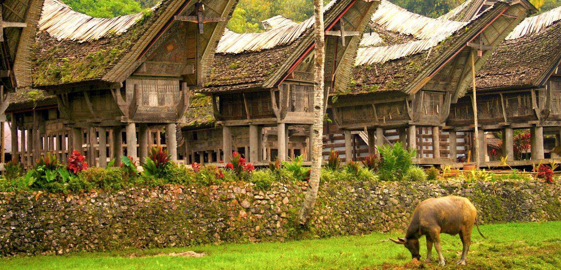 ทานาโทราจา (Tana Toraja) , อินโดนีเซีย