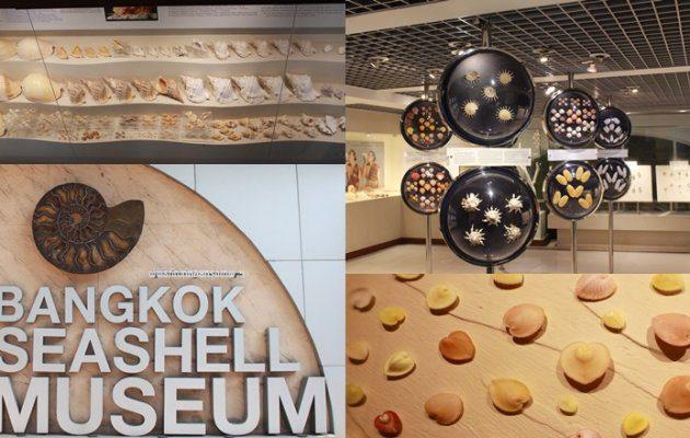 พิพิธภัณฑ์เปลือกหอย กรุงเทพฯ