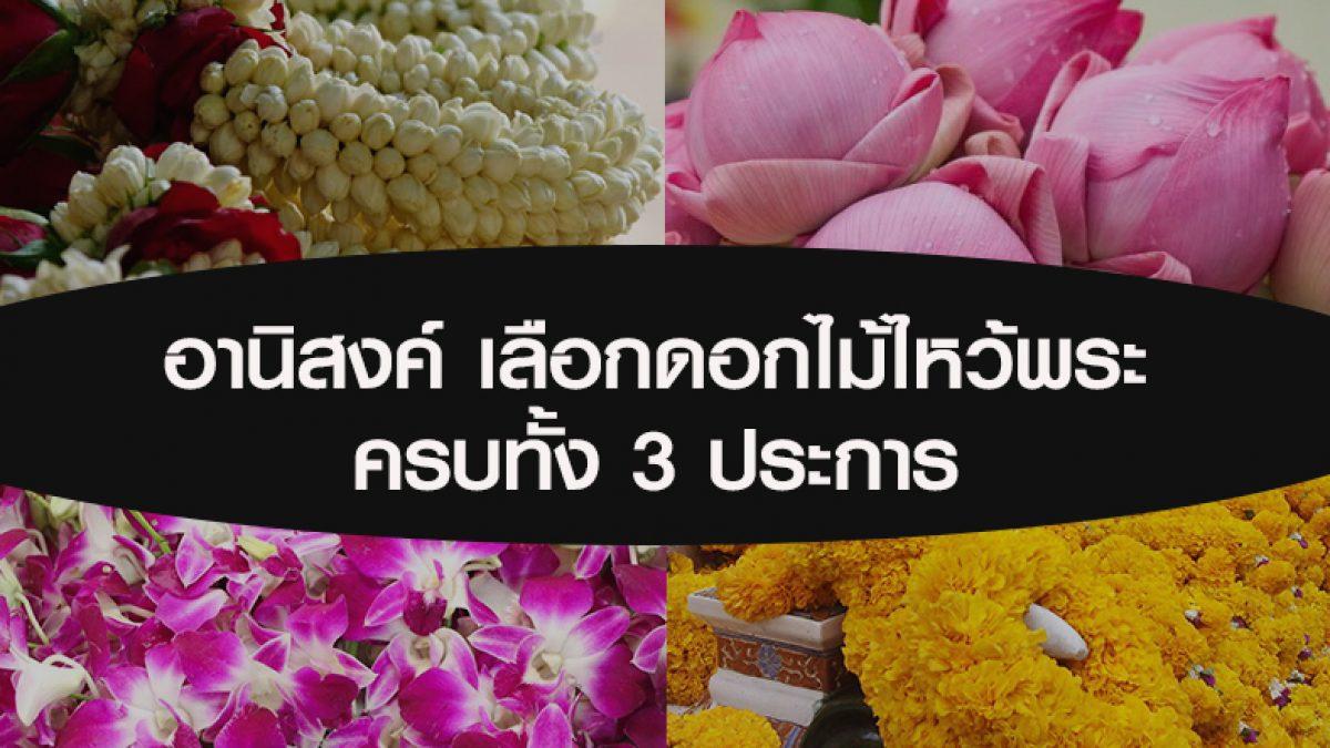 อานิสงค์ผลบุญ จากการเลือกดอกไม้ไหว้พระ ที่ครบทั้ง 3 ประการ