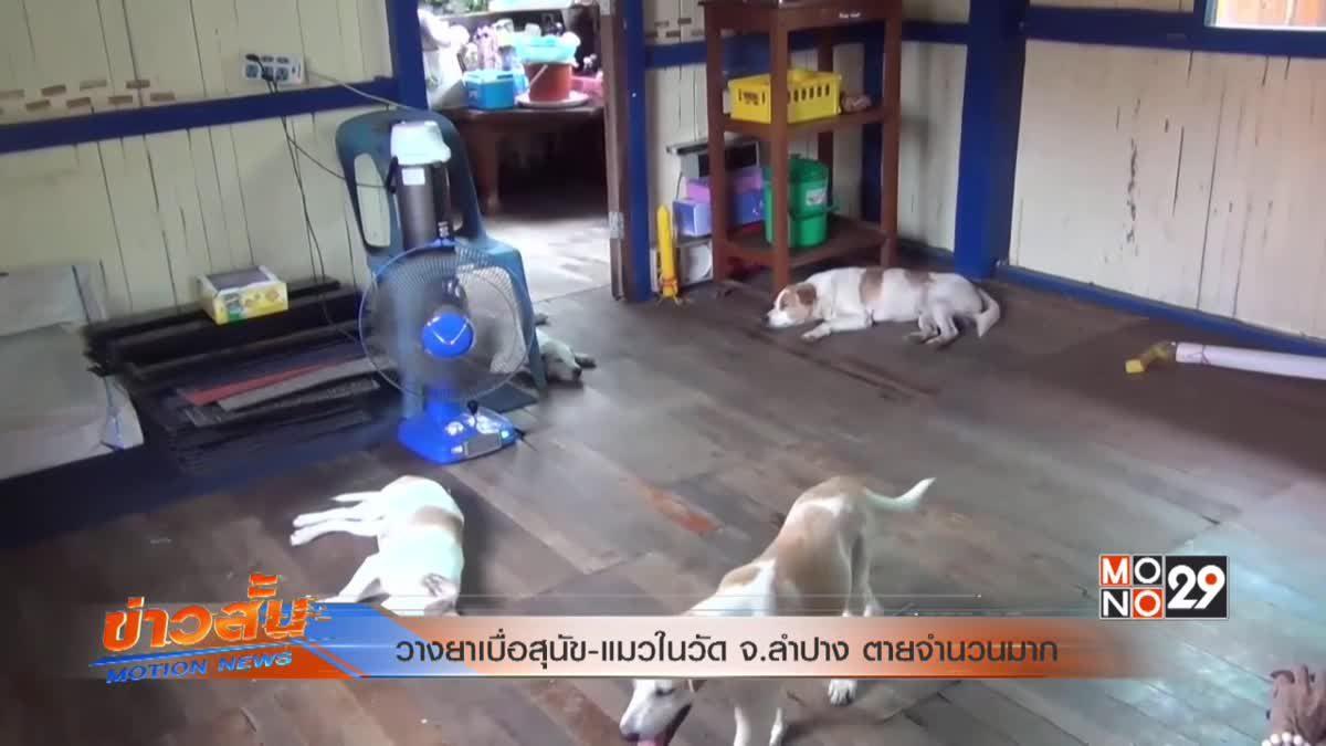 วางยาเบื่อสุนัข-แมวในวัด จ.ลำปางตายจำนวนมาก