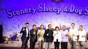 ซีนเนอรี่ วินเทจ ฟาร์ม เปิดตัว Scenery Sheep & Dog Show