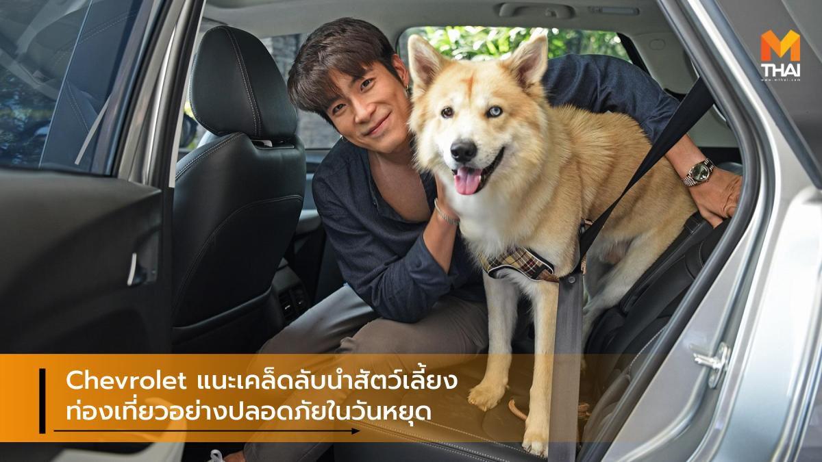 Chevrolet แนะเคล็ดลับนำสัตว์เลี้ยงท่องเที่ยวอย่างปลอดภัยในวันหยุด