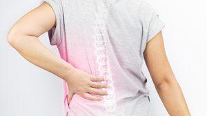 ป้องกัน โรคกระดูกบาง เพื่อป้องกันผู้สูงอายุกระดูกหักได้ด้วยการ ตรวจมวลกระดูก เพื่อรักษาแต่เนิ่นๆ