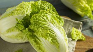 8 ประโยชน์และสรรพคุณของผักกาดขาว ไม่กินไม่ได้แล้ว!!