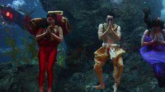 ซีไลฟ์ โอเชี่ยน เวิร์ล ชวนชมละครเวทีใต้น้ำ ครั้งแรกของเมืองไทย