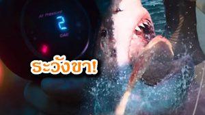 ความระทึกจะกลับมา! เตรียมพบฉลามดุเฉียดนรก ในภาคต่อ 47 Meters Down: The Next Chapter