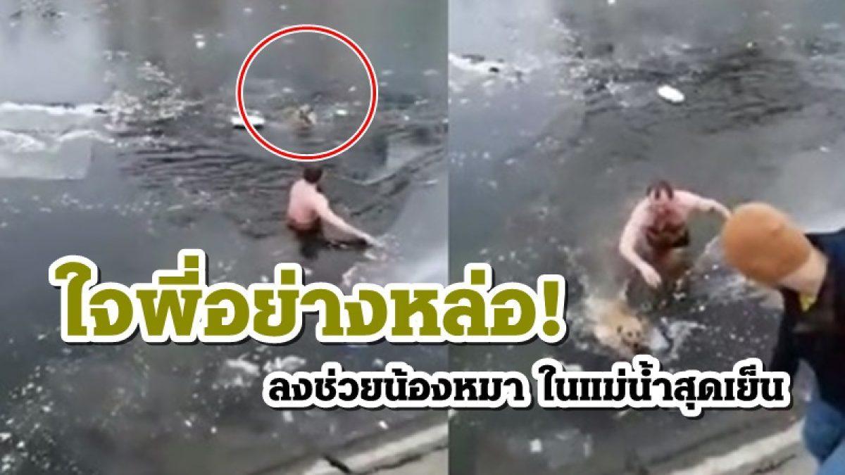 ใจพี่อย่างหล่อ! ชายรัสเซีย ถอดเสื้อผ้าลุยน้ำช่วยน้องหมา ที่กำลังอ่อนแรงในแม่น้ำสุดเย็น