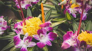 รู้หรือไม่ ดอกไม้ที่ใส่ลงไปในกระทง