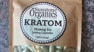 ฮือฮา! ฝรั่งฉกใบกระท่อม ไปสร้างแบรนด์ Thai Kratom ก่อนยกเป็นสมุนไพรน่าทึ่ง