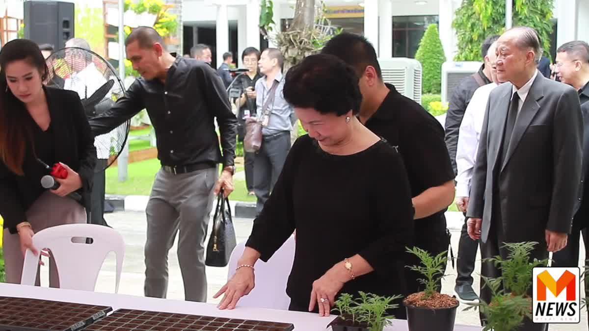 """พรรคชาติไทยพัฒนา จัดกิจกรรม """"กล้าเพื่อ ๙"""" เพาะต้นดาวเรืองถวาย ร.9"""