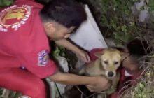 กู้ภัยช่วยสุนัขตกท่อ