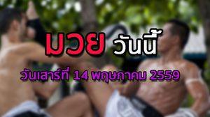 โปรแกรมมวยไทยวันนี้ วันเสาร์ที่ 14 พฤษภาคม 2559