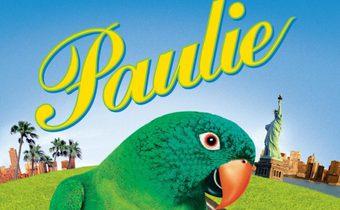 Paulie พอลลี่ นกอะไร้..ร..ร พูดได้ไม่มีเบรค