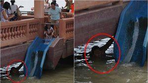 เอาไปวนขาย? พบภาพนักท่องเที่ยวปล่อยปลาทำบุญ แต่มีคนมารอดักจับปลาที่ปล่อย