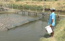 ภัยแล้งกระทบผู้เลี้ยงปลากระชัง จ.นครราชสีมา