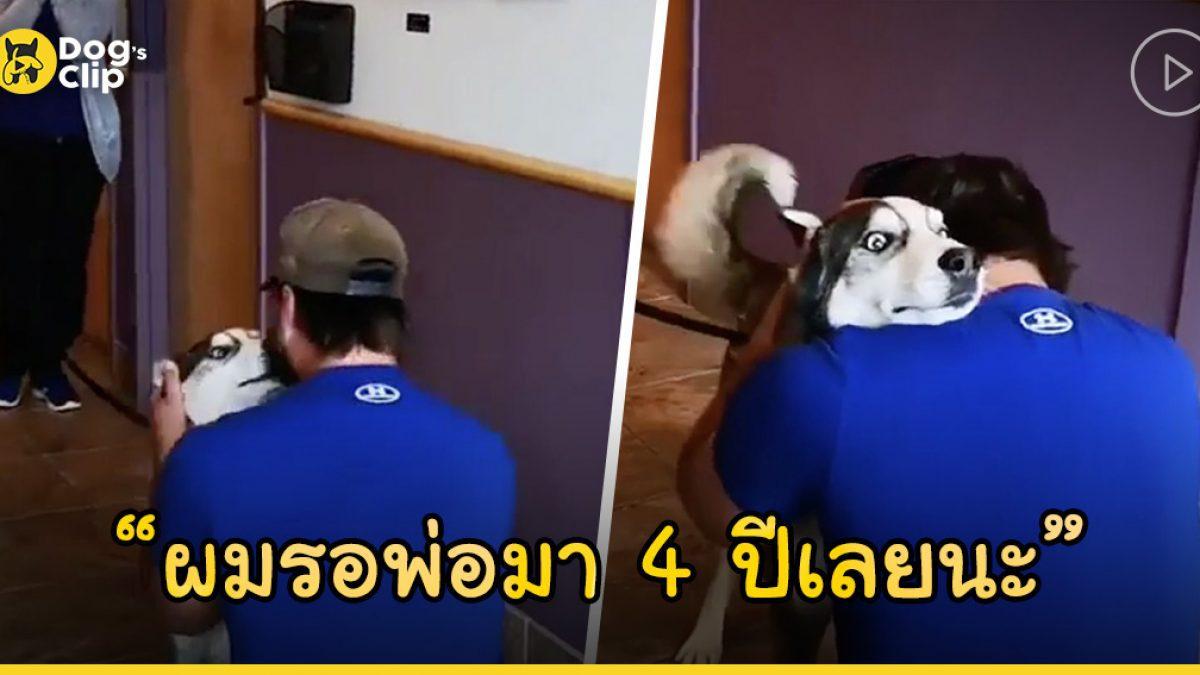 ชายหนุ่มร้องไห้ด้วยความดีใจหลังได้พบหน้าน้องหมาไซบีเรียนที่หายไปนานกว่า 4 ปีอีกครั้ง