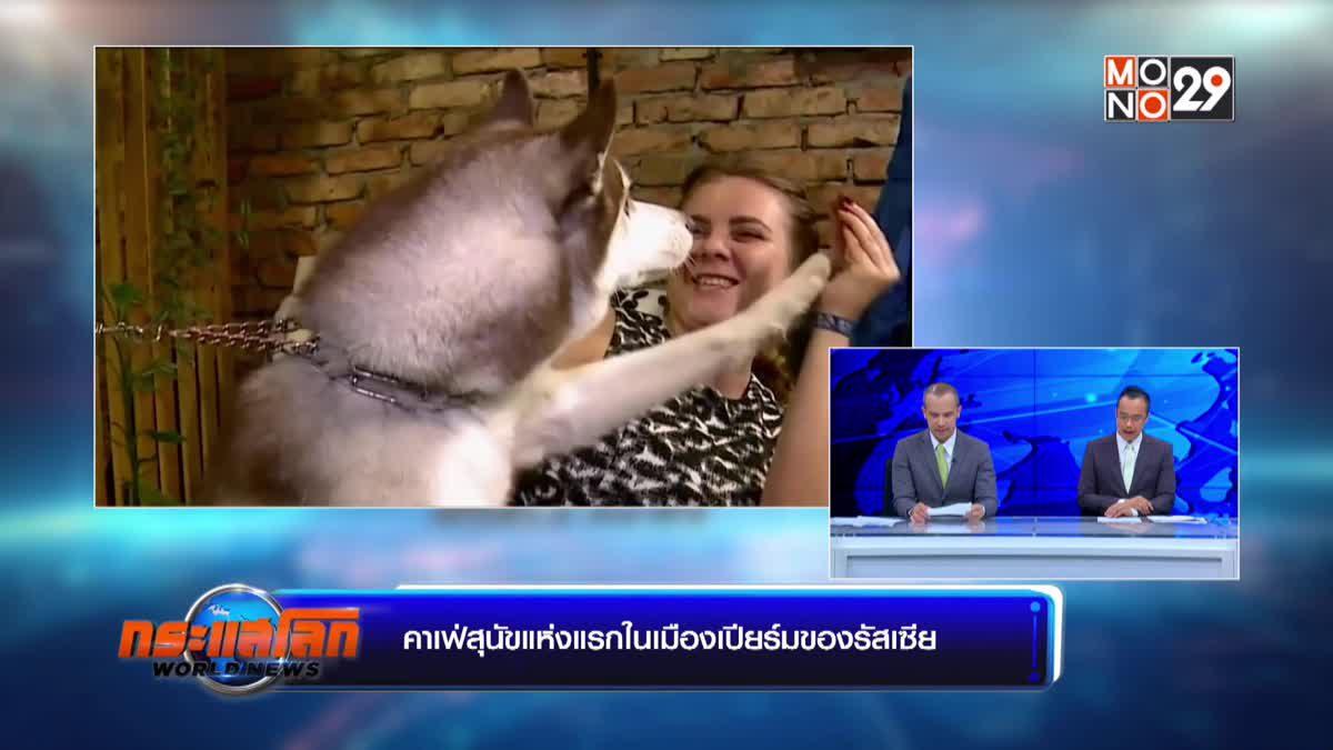 คาเฟ่สุนัขแห่งแรกในเมืองเปียร์มของรัสเซีย