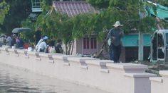 ชาวปทุมธานีเร่งวางกระสอบทราย หลังน้ำทะลักท่วมโรงเรียน – วัด