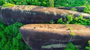 """ชมหินยักษ์ทรงเหมือนปลาวาฬ ที่ """"หินสามวาฬ"""" ภูสิงห์ จ. บึงกาฬ"""