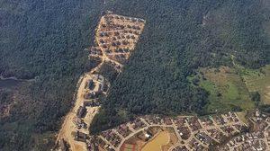 เพจดังจวกยับ เผยภาพพื้นที่ป่าที่หายไป ให้บ้านพักตุลาการ