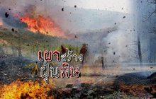 เผาสร้างฝุ่นพิษ 12-02-62