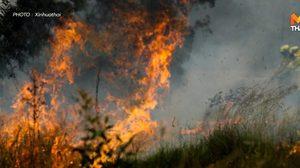 ไฟป่าเผาเกาะมรดกโลกชื่อดังของออสเตรเลีย วอดแล้ว 42%