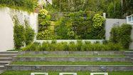 16 ไอเดีย สวนแนวตั้ง สุดฮิปตกแต่งบ้านด้วยผนังต้นมอส