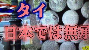 น่าอับอาย! ญี่ปุ่นเตือน ยาลดความอ้วนไทย ทำคนญี่ปุ่นตาย 4 ราย