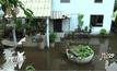 ฝนตกหนักทำชุมชนบางกะดีน้ำท่วมขังปลิงอาละวาด