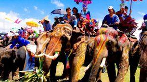 หมู่บ้านช้าง ใหญ่ที่สุดในโลก จ.สุรินทร์