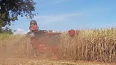 เกษตรกรชาวไร่อ้อย เรียกร้องรัฐแก้ปัญหาราคาตกต่ำ