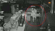 ฟินจริง! ขโมยสุดแสบโชว์ช่วยตัวเอง ก่อนค้นลักของในร้านค้าขายอาหาร