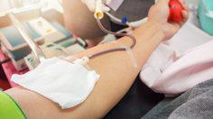 ประกาศ!!! โรงพยาบาลพุทธชินราช พิษณุโลก ขาดเลือดกรุ๊ป A และ O จำนวนมาก